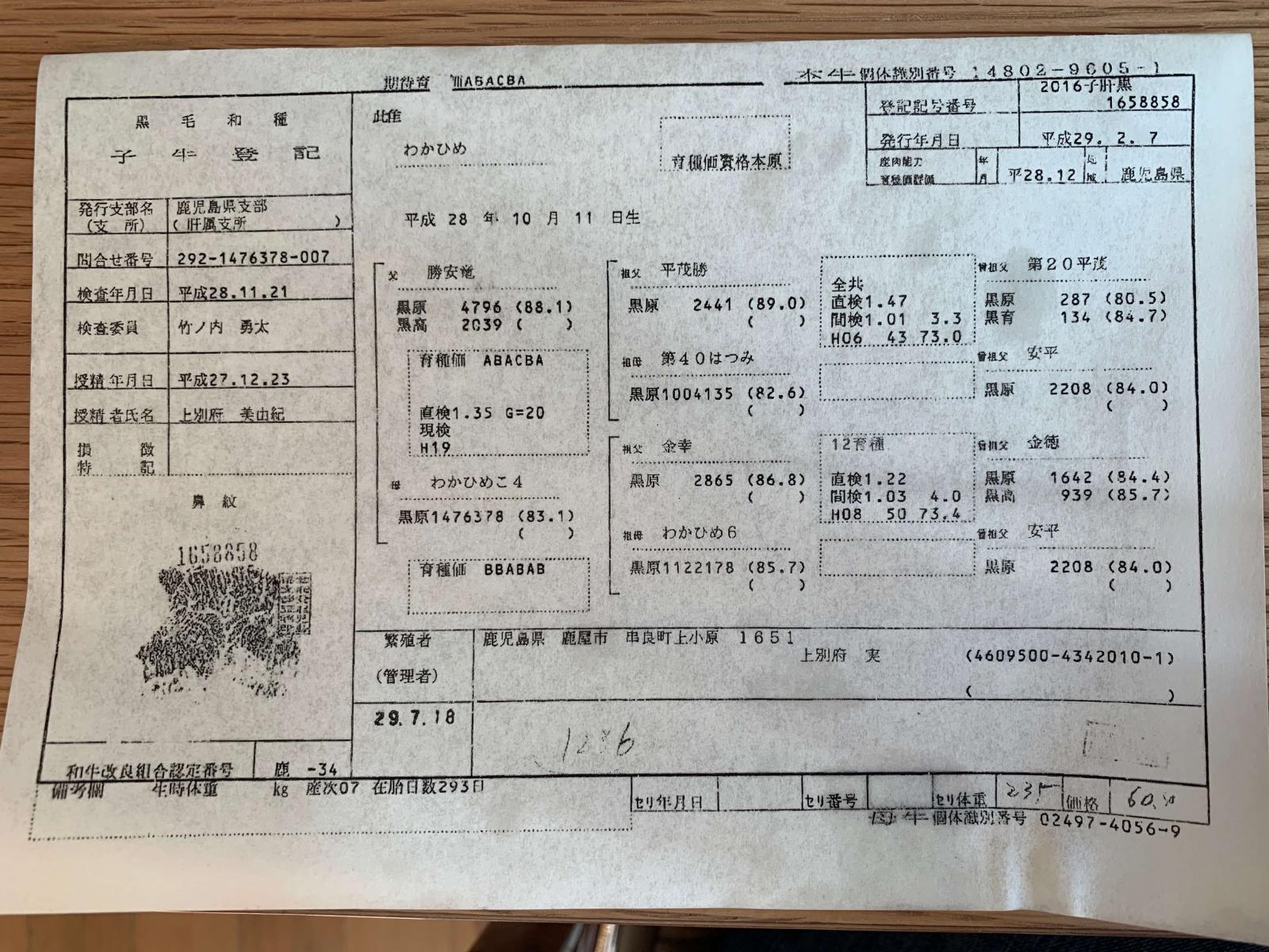 Sistema exclusivo de classificação diferencia a carne japonesa