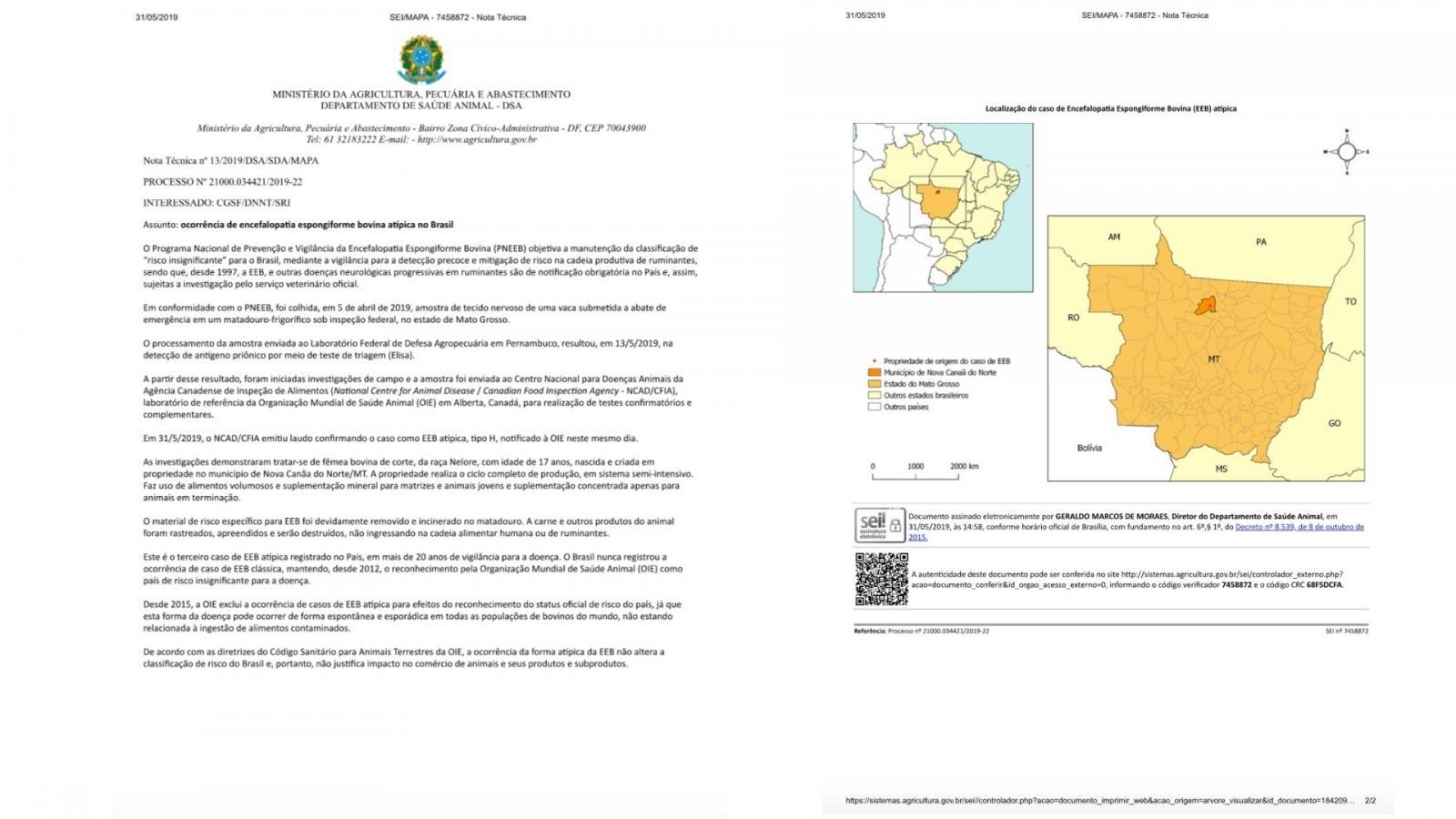 BSE no Mato Grosso